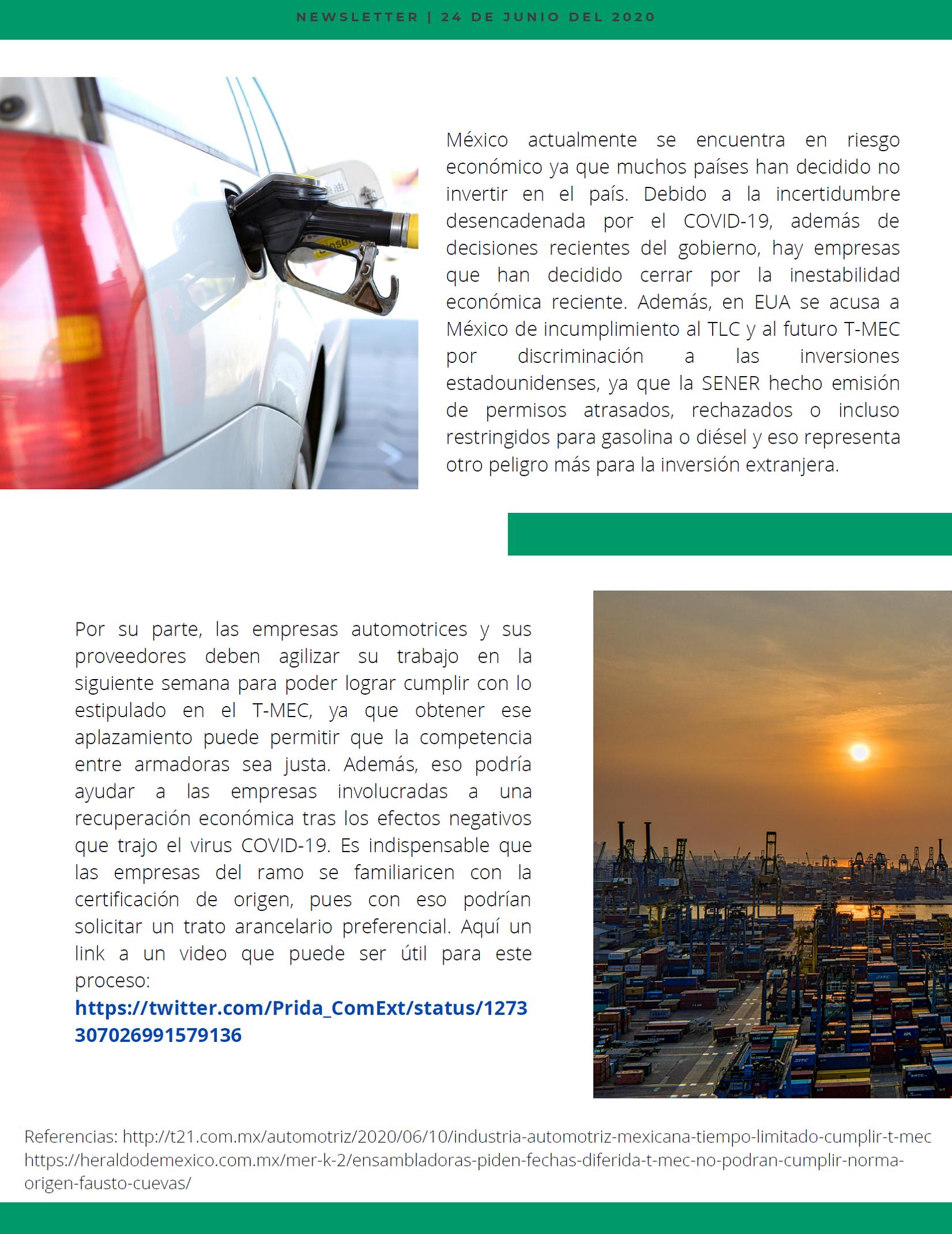 newsletter 3 esp 4.png